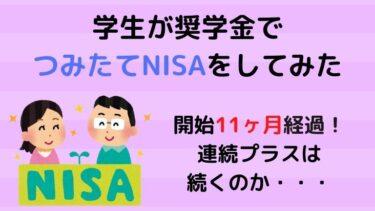 【NISA】学生がつみたてNISAを始めて11ヶ月が経過!連続プラス記録はどこまで続くのか・・・